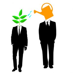 Koučink nebo mentoring?