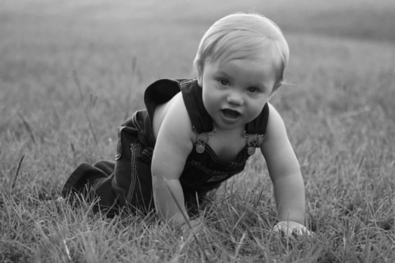 Průvodce psychomotorickým vývojem kojenců 6 – 12 měsíců
